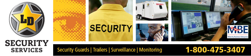 LVD Security Services